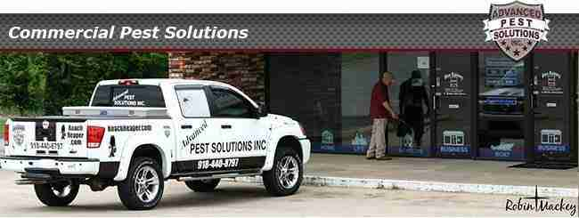 Mice, rats, spiders, ants and bed bugs can all deter your customers, call us for quality treatment.