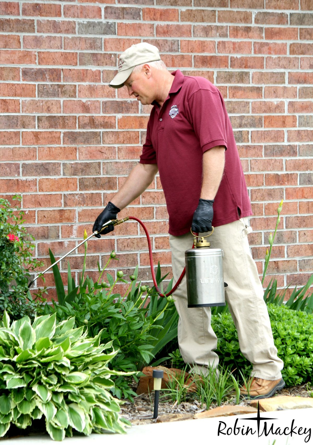 Let Advanced Pest Solutions Solve Your Pest Problems
